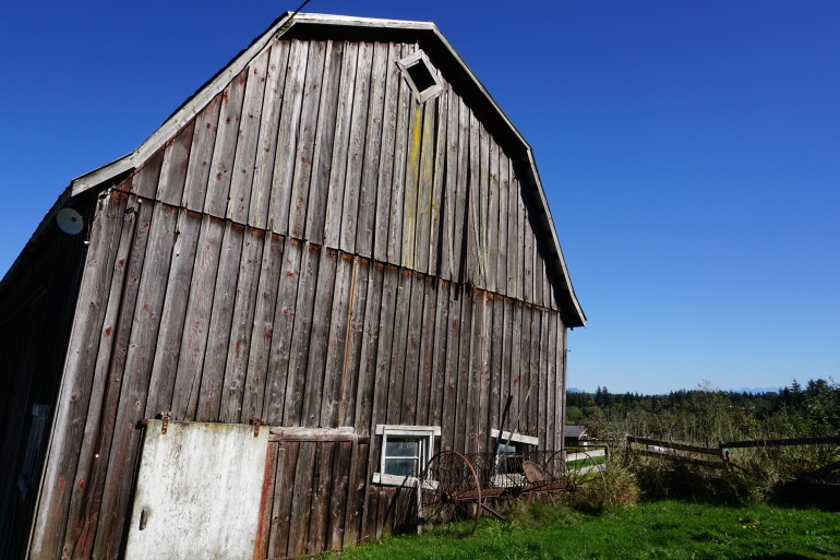 Beautiful Barn at Vista D'oro, Langley, BC
